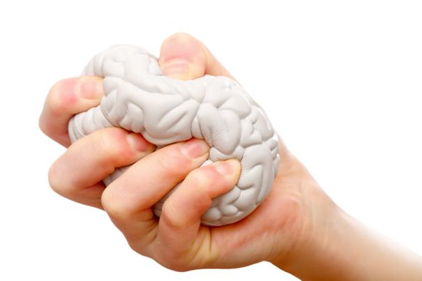 neuroplastyczność